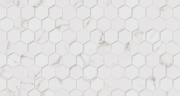 Картинки по запросу forest carrara blanco