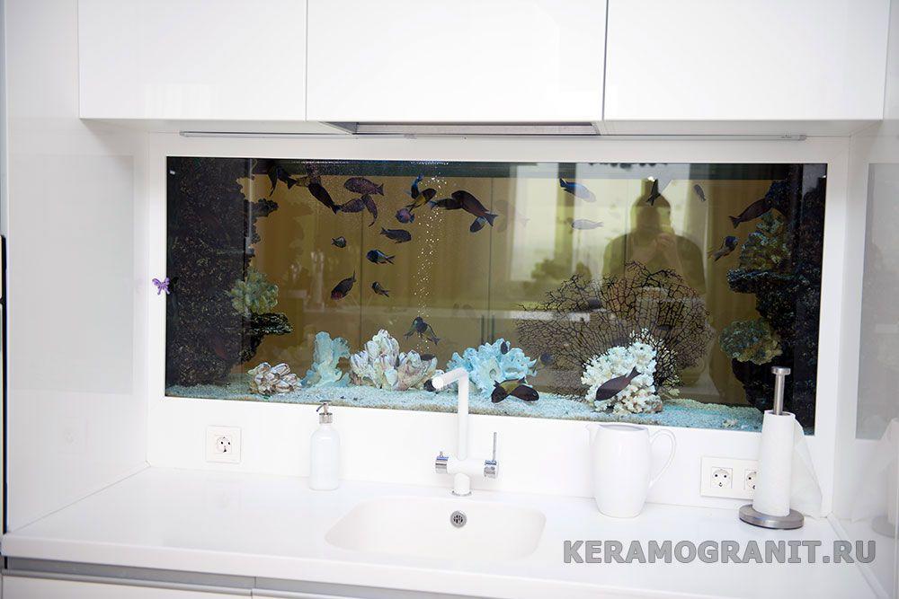 Аквариум на фартуке в кухне (фото 6)